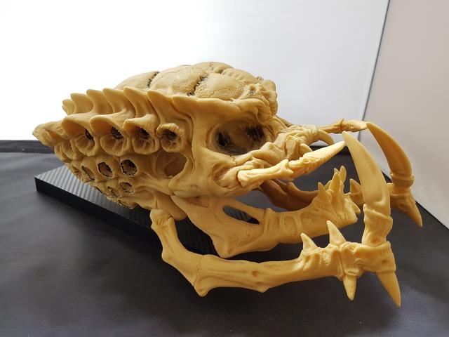 Predator – Skull